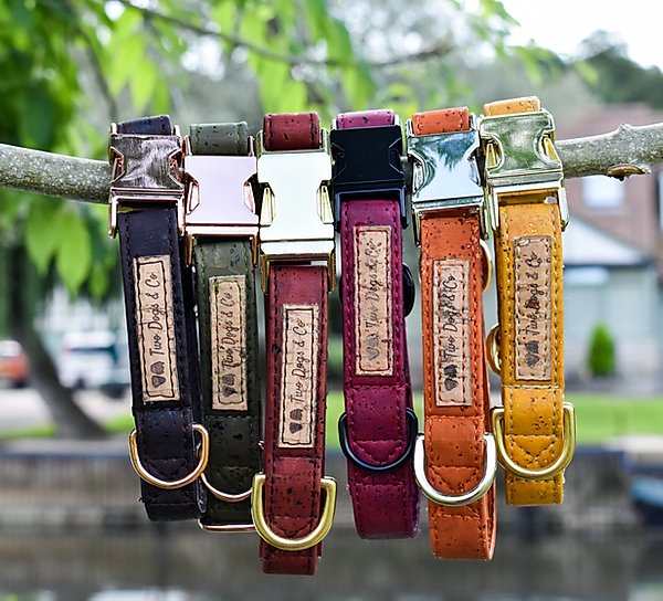 Cork Collars - Two Dogs & Co.