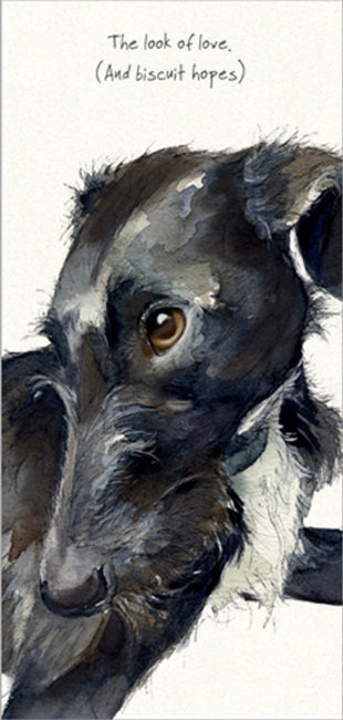 Lurcher Greeting Card – Look of Love