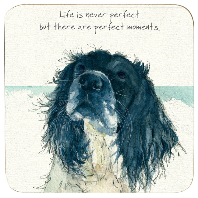Coaster - Spinger Spaniel Perfect Moments