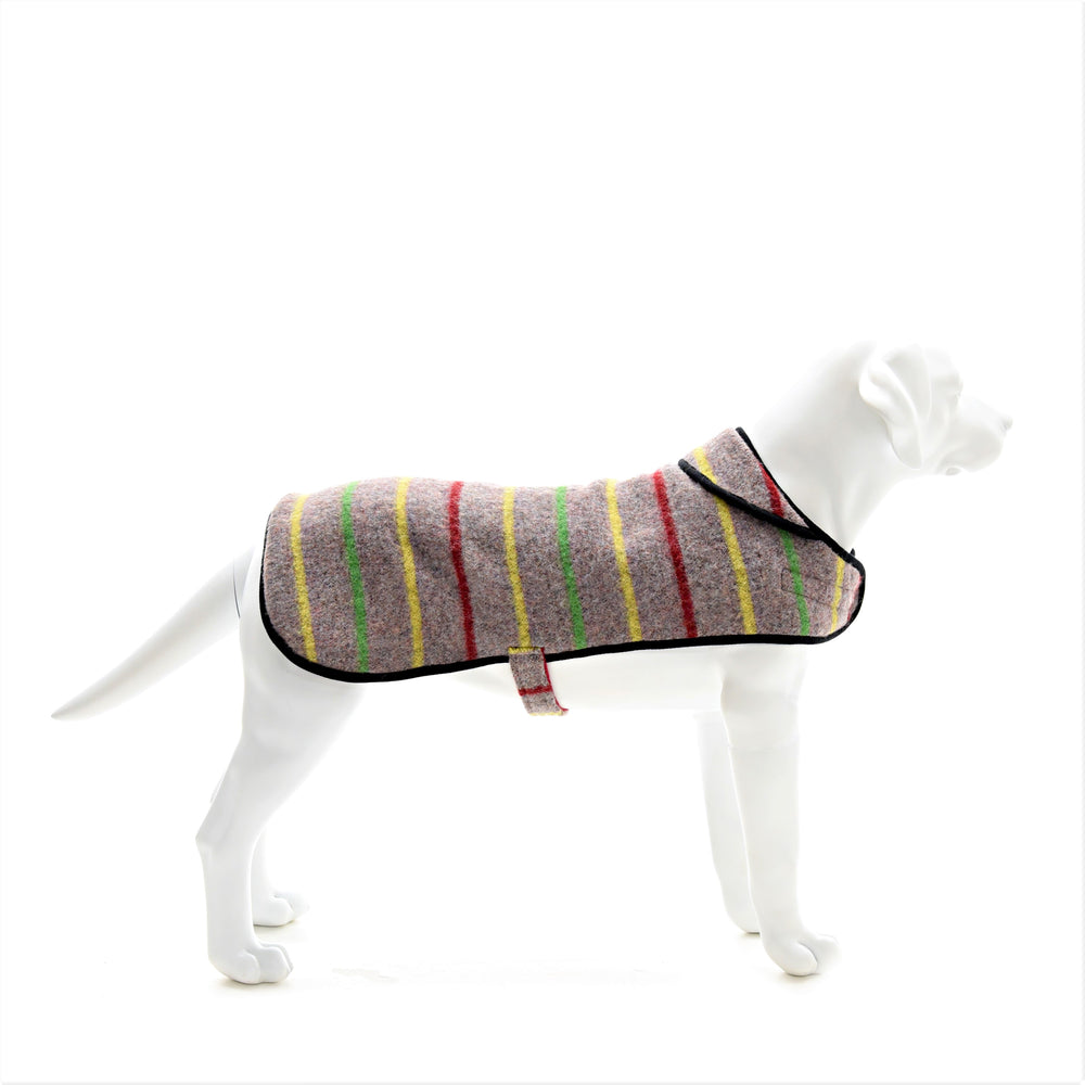 Stripe Dog Coat with Fleece