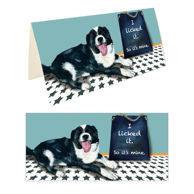 Border Collie Greeting Card - Lick