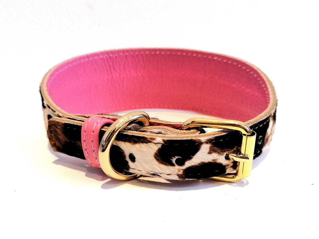 Willow Walks Leather Hound Collar