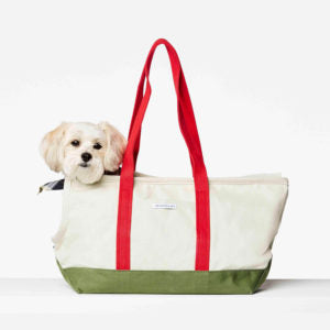 Constatin Dog Carrier