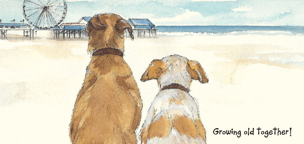 Scruffy Mutts Greeting Card - Growing Old