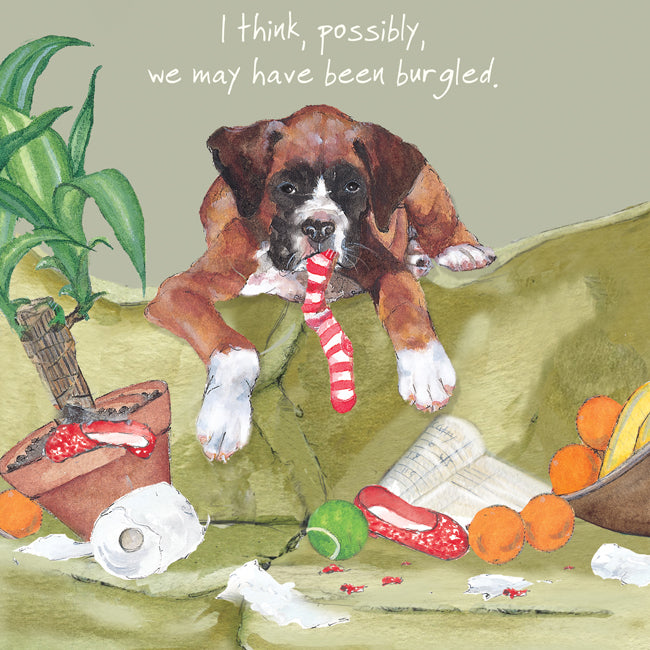 Boxer Puppy Greeting Card – Burgled