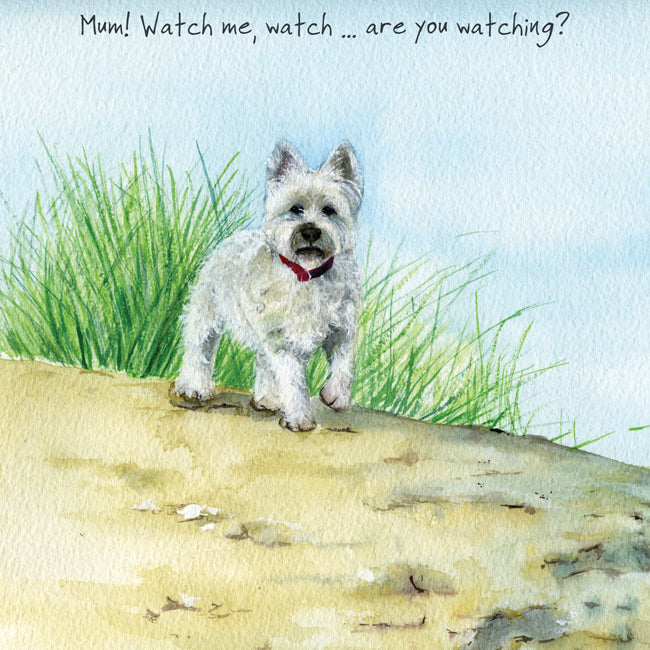 West Highland Terrier Greeting Card – Watch Me