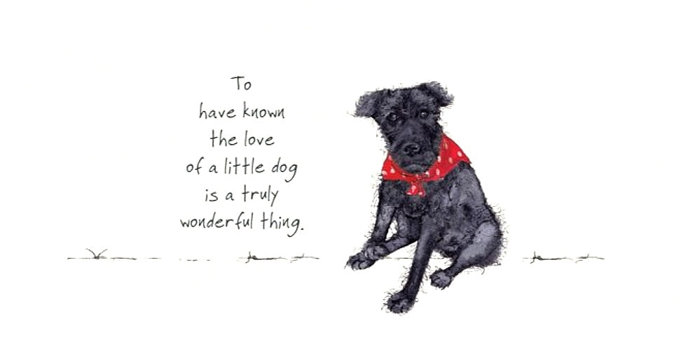Patterdale Terrier Card - Little Dog