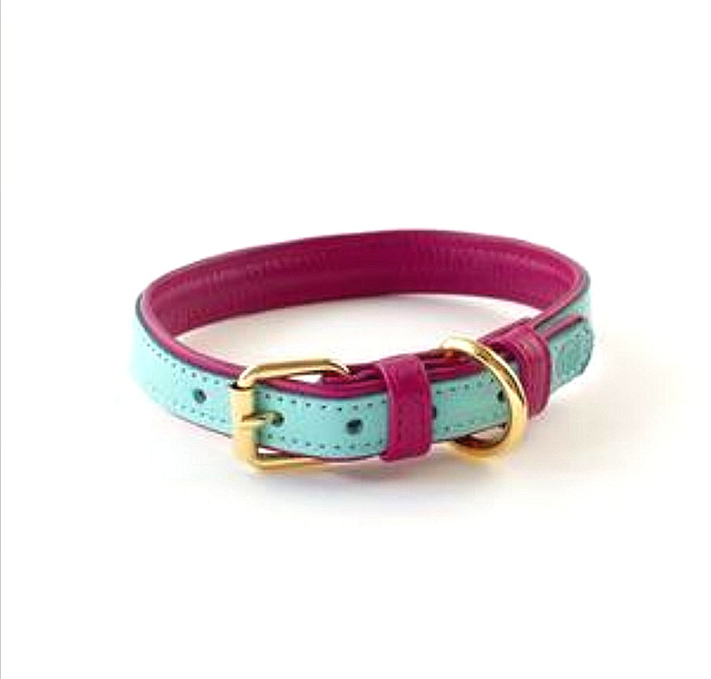 Willow Walks Leather Collar