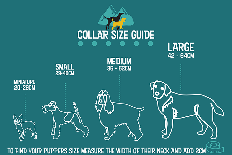 Hiker Hounds Climbing Rope Collar