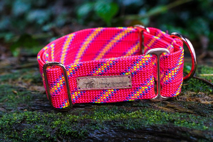 Hiker Hounds Martingale Collar