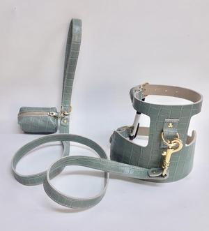 Willow Walks Leather Harness