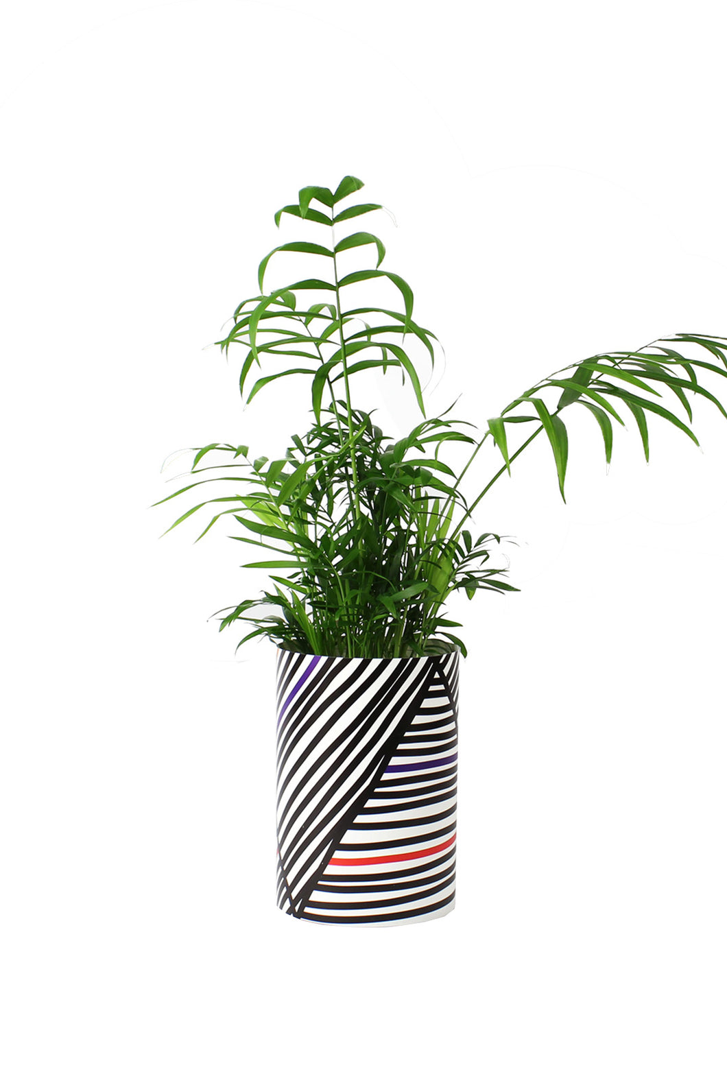Papier Tigre - Paper Cover Pot Small - Palm