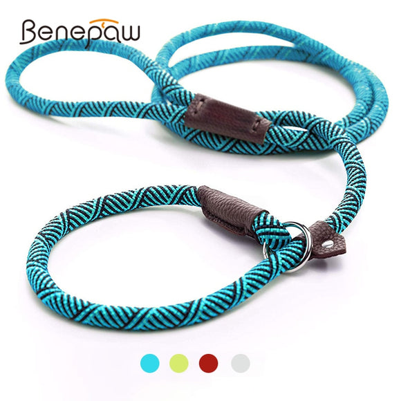 Benepaw Durable Slip Rope Dog Leash Collar 2 In 1 Adjustable Loop Collar Comfortable Small Meidum Large Pet Harness Leash