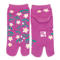 Tabi Socks Short type Weeping Cherry Tree/M