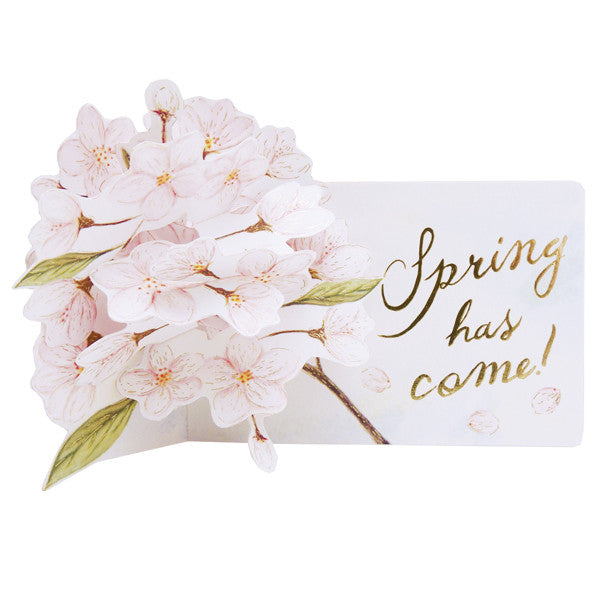 Greeting Life Cherry Blossom Pop up Card LY-29