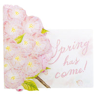 Greeting Life Cherry Blossom Pop up Card LY-30