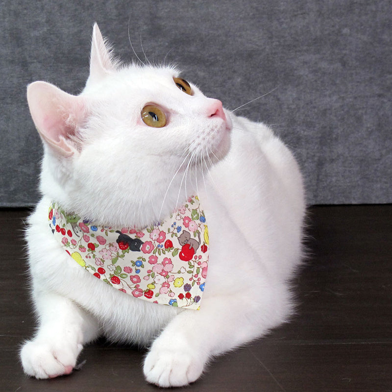 COCOLUCK  Cat Bandana CO-6197-CATFLOWER