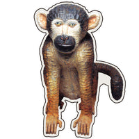 Greeting Life Animals Postcard MIisawa Atsuhiko Monkey WA-3