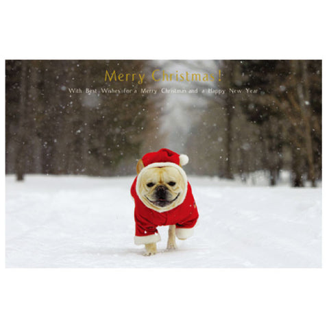 Greeting Life Natsuhiko Christmas Post Card NA-12