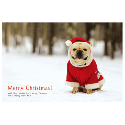 Greeting Life Natsuhiko Christmas Post Card NA-22