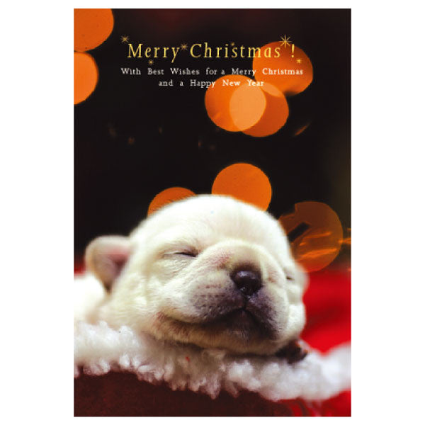 Greeting Life Natsuhiko Christmas Post Card NA-35