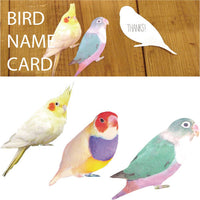 Greeting Life Bird Name Card NC-44