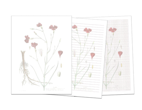 Vintage Red Flower Printable Writing Paper and Graph Paper