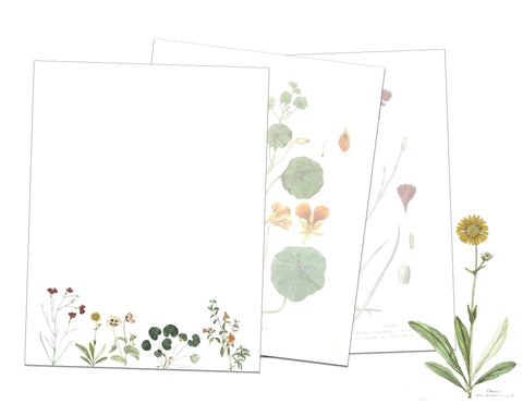Vintage Flower Printable Unlined Paper