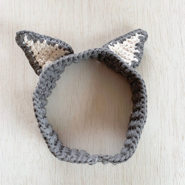 Raccoon Headband and Tail