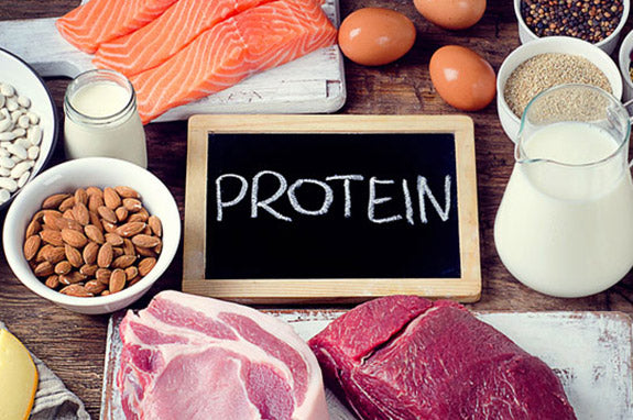 Protein- Your Way To Good Health