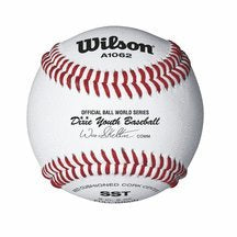 Wilson A1062 Dixie Youth Tournament Series Baseball (12-Pack), White