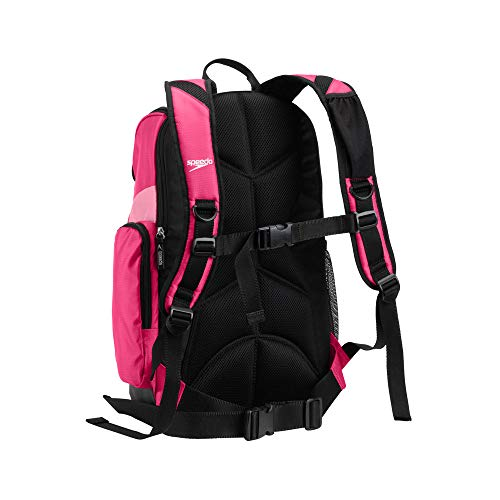 Speedo Teamster Backpack, Fuchsia Purple/Azalea Pink, 25-Liter
