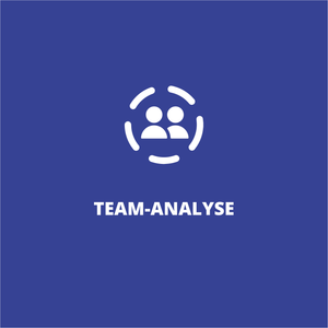 Team-Analyse - Sales Inspiration Shop