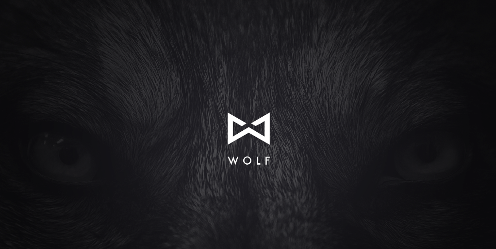 LAUNCH - Wolf Clothing Brand