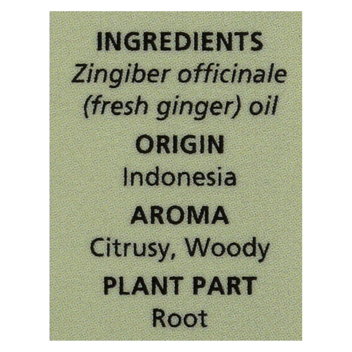 Aura Cacia - Essential Oil - Fresh Ginger - 0.5 Oz. - Handley Global Group, LLC