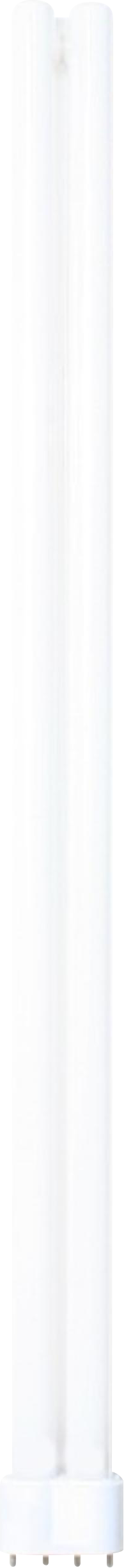 Knightsbridge PL 55W LAMP 4 PIN - COOL WHITE