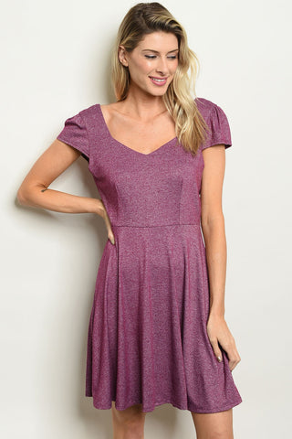 Womens Skater Purple Dress