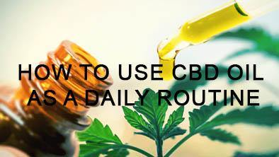 How to use CBD oil as a daily routine | No1 CBD