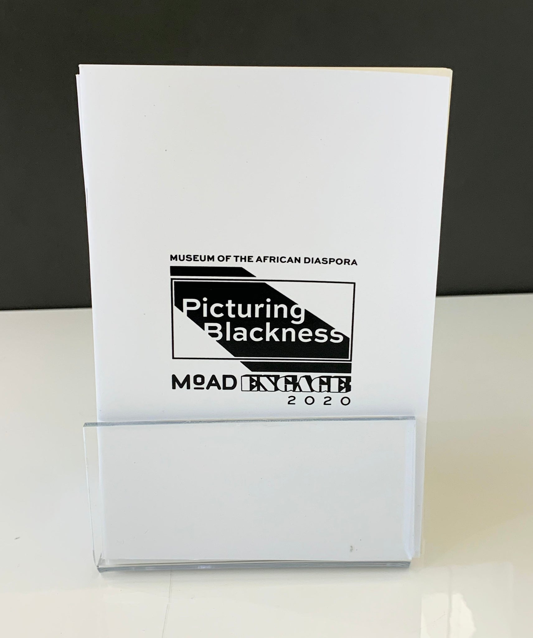 Picturing Blackness Symposium Notebook