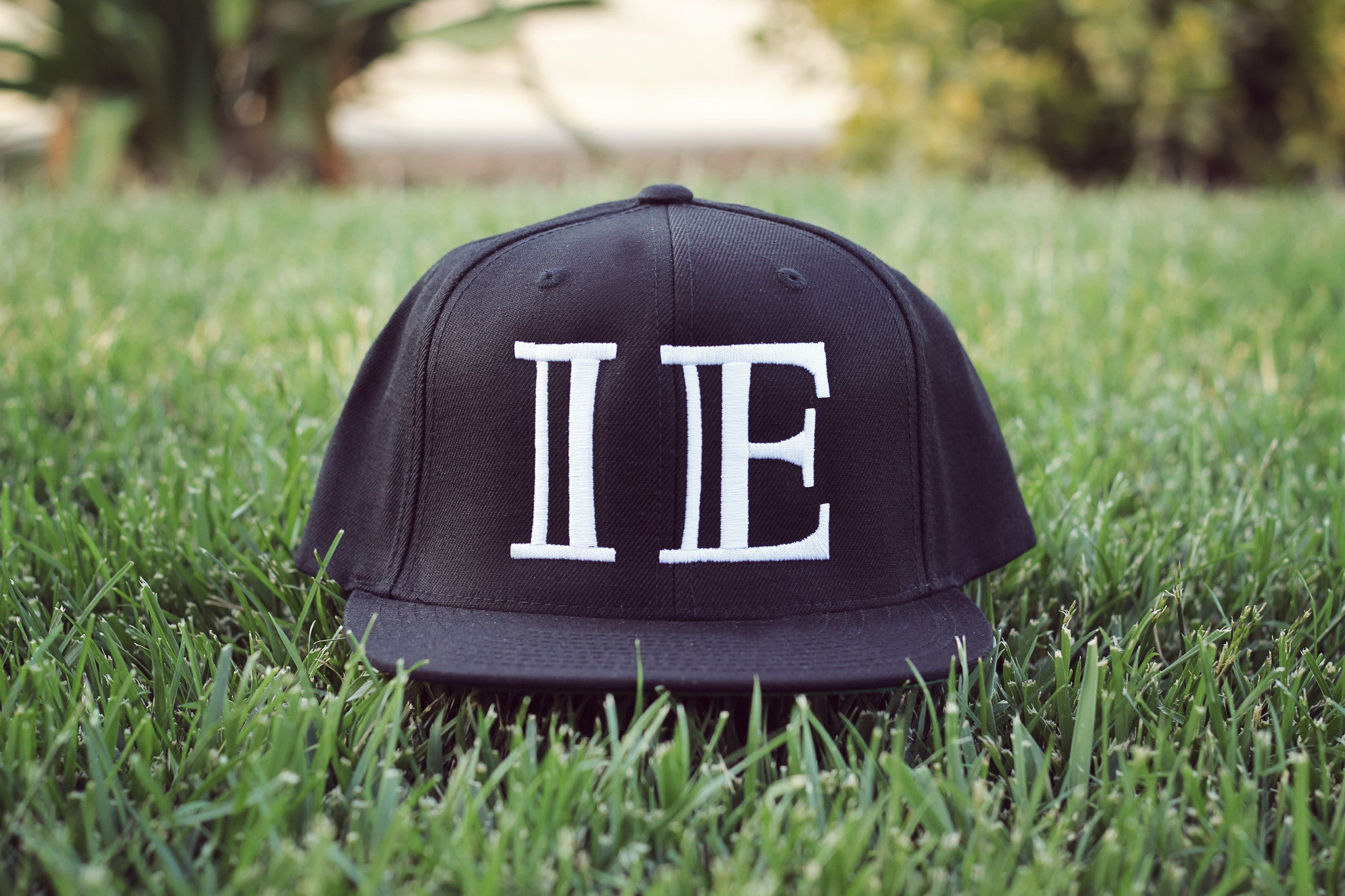 Limited IE Logo