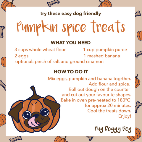 recipe for pumpkin spice treats for dogs