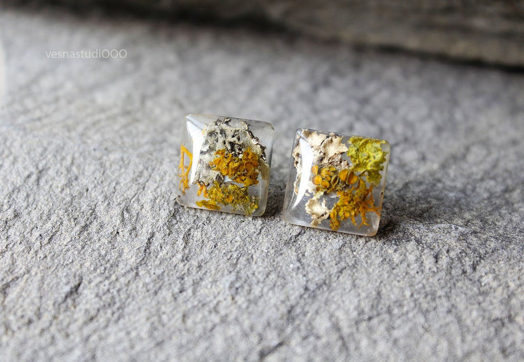 Moss Lichen Terrarium Earrings