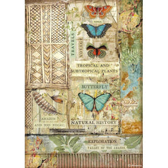Amazonia - Stamperia - Rice Paper Sheet A4 - Butterfly (4533)