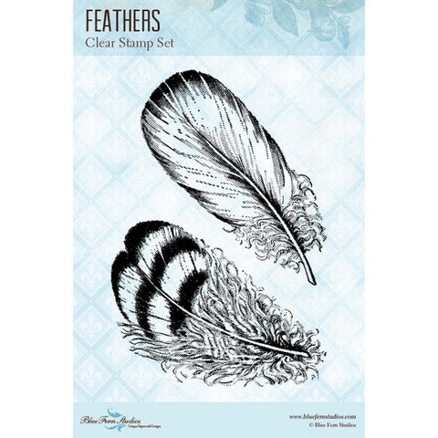 "Blue Fern Studios Clear Stamps 4""X6"" - Feathers"