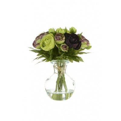 Green Aubergine Ranunculus Bouquet in Glass Vase