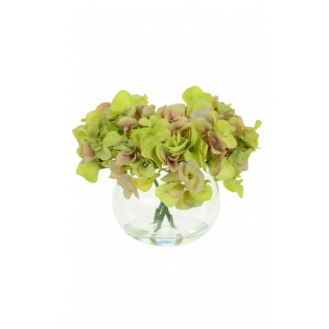 Green Hydrangeas in Globe Vase