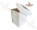 White Tall Box-10x10x12