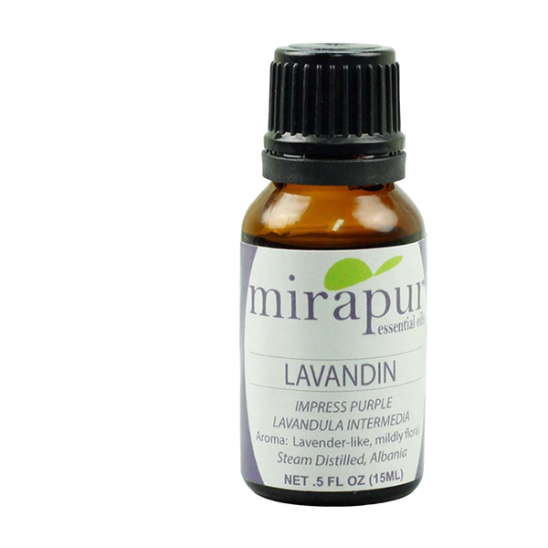 Lavandin, Impress Purple, lavandula intermedia