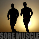 Sore Muscle Blend, Mirapur™ Essential oil Blends