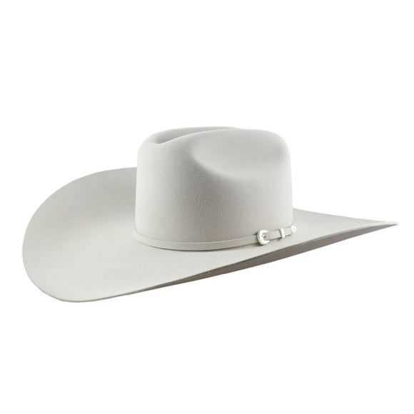 Stetson High Noon 6x Silverbelly Ala 5